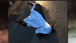 Principal foto de caballos muertos