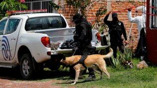 Peritos forenses en Jalisco
