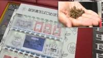 Una máquina expendedora que vende insectos comestibles no solo se ha inventado, sino que ya está en funcionamiento.