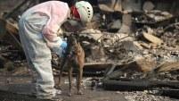 Los siniestros han causado muertos, miles de evacuaciones y sembrado destrucción. Te mostramos las imágenes de la tragedia.