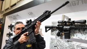 Control de armas: Cámara Baja aprueba proyecto de ley
