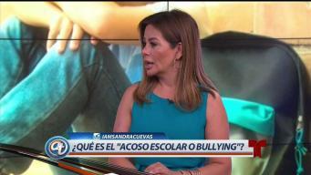 El acoso escolar o bullying