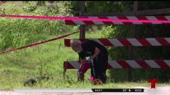 Hallan cuerpo sin vida en vecindario al norte de Houston