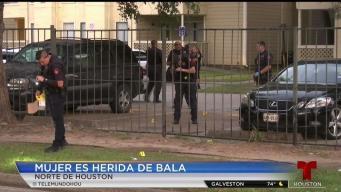 Mujer es herida en lluvia de balas al norte de Houston