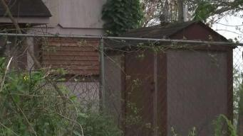 Tres perros atacan y matan a hombre en Santa Fé