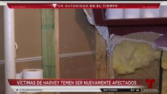 Víctimas de Harvey temen ser afectados de nuevo