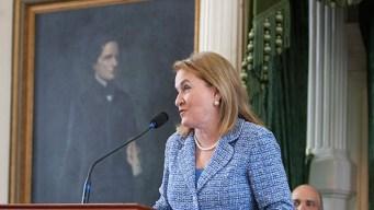 Sylvia García se postula al congreso en Washington