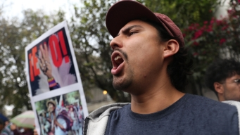 Simpatizantes de Evo en México celebran su asilo