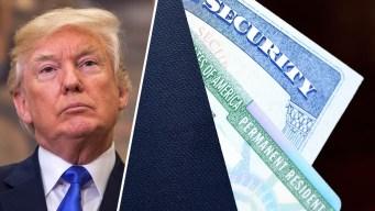 """Trump y la """"green card"""" por matrimonio: los cambios"""
