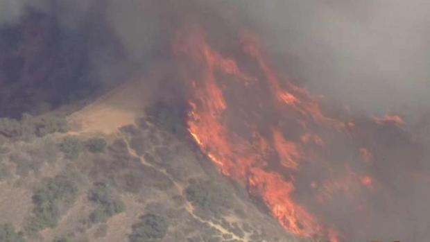 [TLMD - LA] Arrestan a presuntos autores de incendio en Eagle Rock
