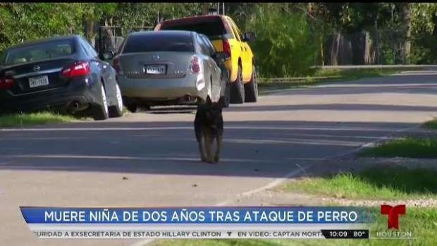 [TLMD - Houston] Niña de dos años muere tras ser atacada por un perro