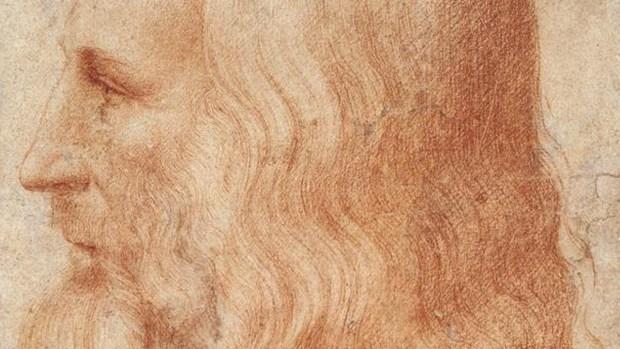 El mechón de pelos de Leonardo da Vinci