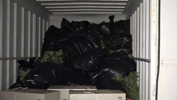 FOTOS: Millonaria incautación de droga en Conroe