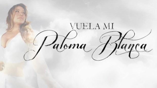 "Video: Chiquis se lanza con ""Paloma blanca"""