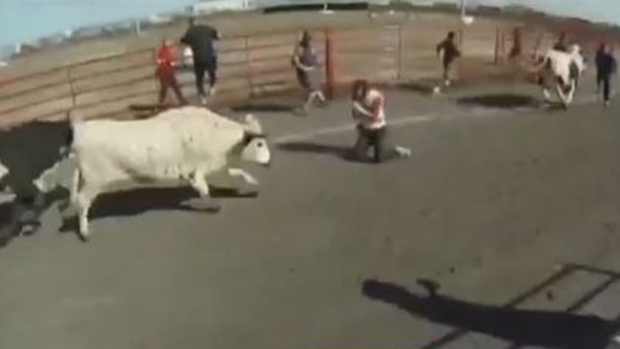 Video: Hispano embestido por toros en Texas