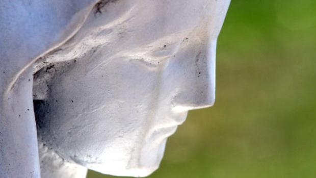 Video: Supuesta lágrima en estatua de la Virgen