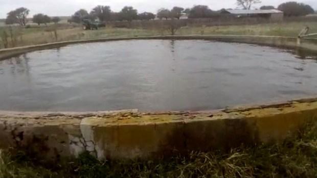 Viral: otro video del extraño movimiento del agua en un tanque en La Pampa