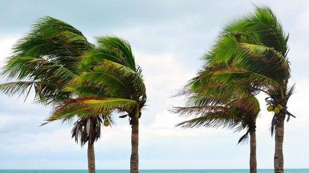 Pronostican alta actividad en temporada de huracanes