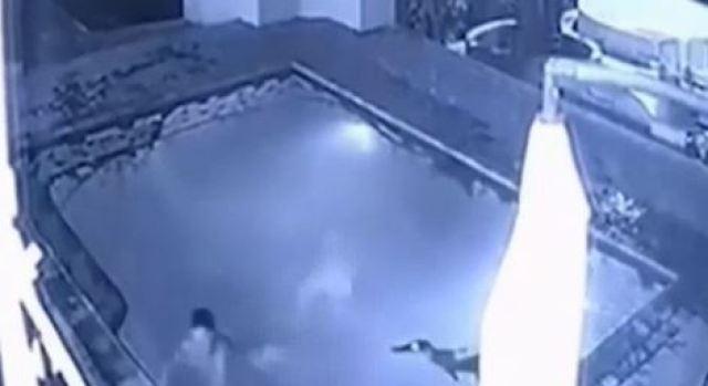 Abandona a su novia luego que cocodrilo interrumpiera su cita romántica — YouTube