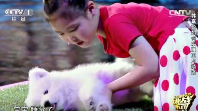 Video: sorprendente niña que hipnotiza animales