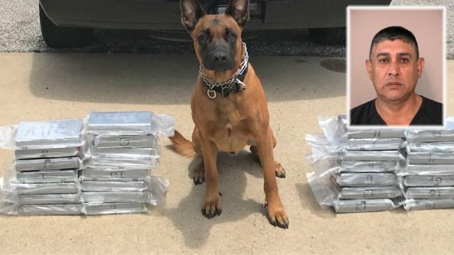 Perro policía impide distribución de $1.4 millones de droga en área de Houston
