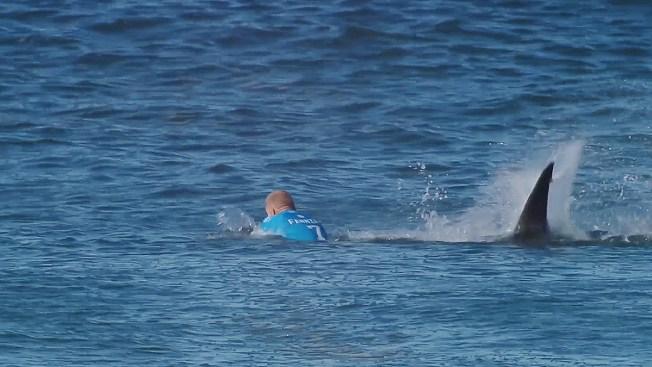 Surfista justifica a tiburón que lo atacó