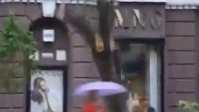 Mujer casi muere aplastada por árbol