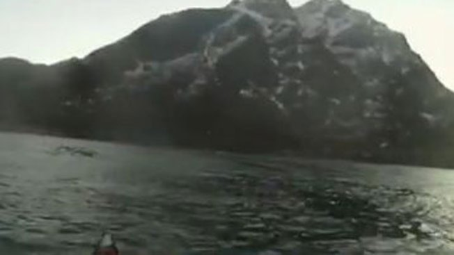 Estremecedor visitante en lago noruego