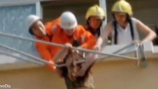 Salvan a mujer colgada de un tendedero