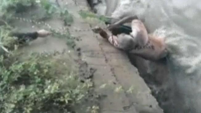 Dramático rescate de anciano en video
