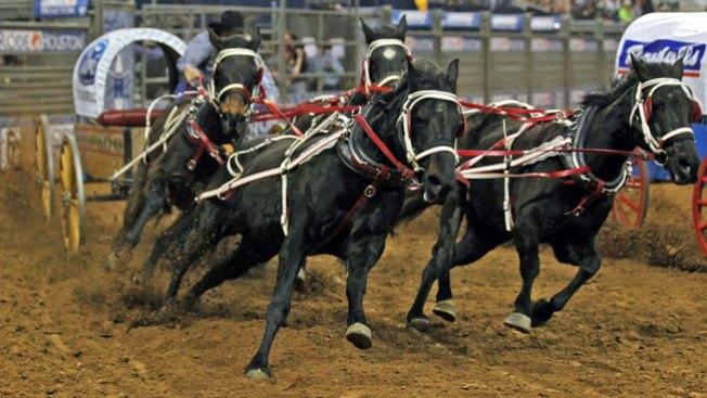 Rodeo Houston ¡Dispara la adrenalina!