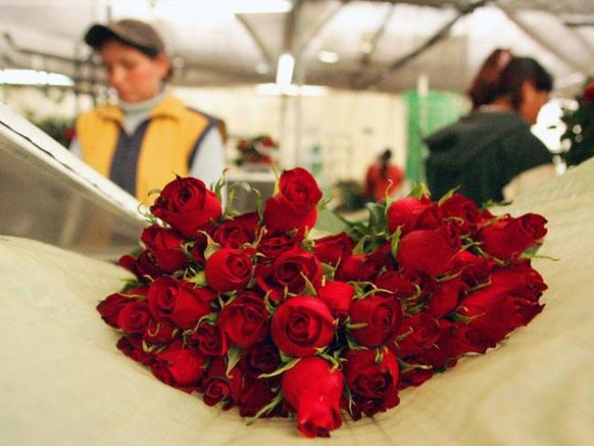 Encuesta: Lo preferido en San Valentín