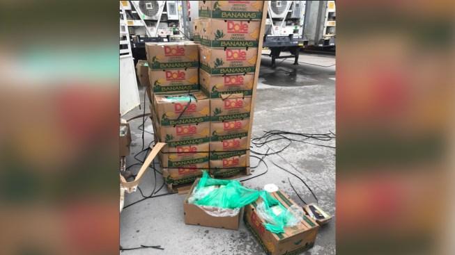 Incautan bananas con cocaína enviadas a cárcel en Angleton